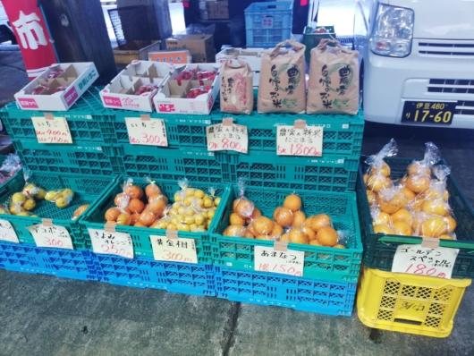柑橘類の販売