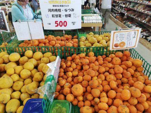 柑橘類の詰め放題